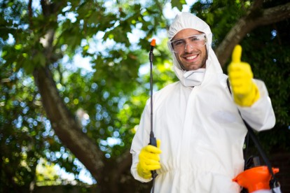 Pest Control in Brixton, SW2. Call Now 020 8166 9746