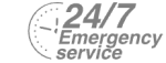 24/7 Emergency Service Pest Control in Brixton, SW2. Call Now! 020 8166 9746