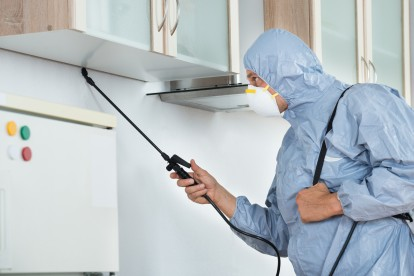 Home Pest Control, Pest Control in Brixton, SW2. Call Now 020 8166 9746